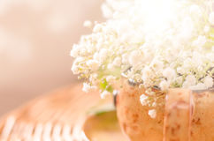 Blurred abstract background with white flowers. Blurred abstract spring natural background with white flowers in a cup, copy space Royalty Free Stock Image