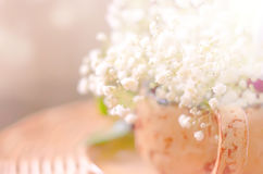 Blurred abstract background with white flowers. Blurred abstract spring natural background with white flowers in a cup, copy space Stock Images
