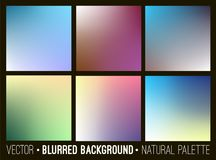 Blurred abstract backgrounds collection. Smooth template design Royalty Free Stock Photo