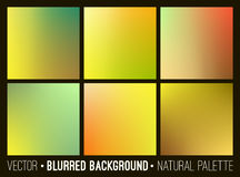 Blurred abstract backgrounds set. Stock Photo