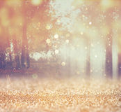 Blurred abstract photo of light burst among trees. And glitter bokeh lights. filtered image and texture vector illustration