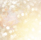 Blurred abstract photo of light burst among trees and glitter bokeh lights. filtered image and textured. Stock Photography
