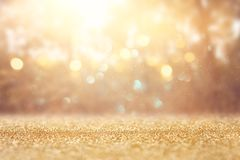 blurred abstract photo of light burst among trees and glitter golden bokeh lights. stock images