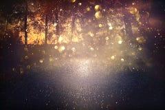blurred abstract photo of light burst among trees and glitter golden bokeh lights. stock image