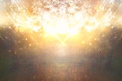 blurred abstract photo of light burst among trees and glitter golden bokeh lights. royalty free stock photo