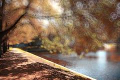Blurred autumn city park Stock Photos