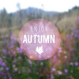 Blurred autumn retro card with heath, moor landscape,  Royalty Free Stock Photos