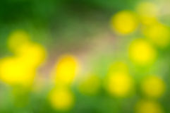 Blurred background. With bokeh effect of warm colors Royalty Free Stock Photo