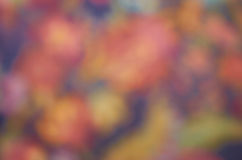 Blurred background Royalty Free Stock Photo