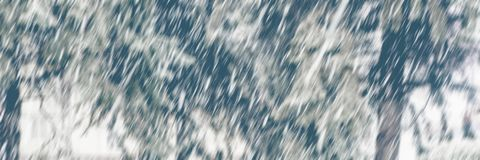 Blurred background falling snowflakes in the park. Banner for design. Ukraine. Europe royalty free stock photography