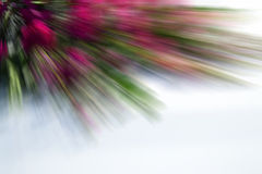Blurred background. Linear blurred backgroundб natural material Stock Photography