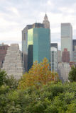 Blurred background of Manhattan Skyscrapers behind Trees Stock Photo