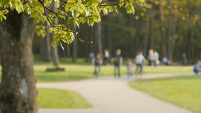 Blurred background of people activities in park with bokeh, spring and summer season stock video