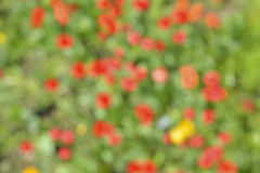 Blurred background 3 Stock Photos