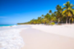 Blurred background, sandy beach Stock Photography