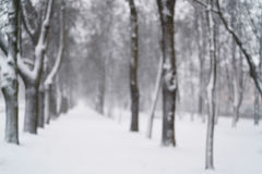 Blurred background of snowfall in the morning on town alley Royalty Free Stock Photos