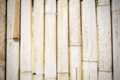 Blurred bamboo wood wall , vintage  ,vignette , background . Royalty Free Stock Photography