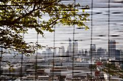 Blurred Bangkok cityscapes, bamboo blind, focused tree. View of Bangkok cityscapes with a tree on foreground through a bamboo blind on a bright sky day. Blurred royalty free stock images