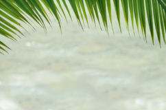 Blurred beach abstract background Stock Image