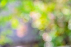 Blurred bokeh multicolor nature background royalty free stock photography