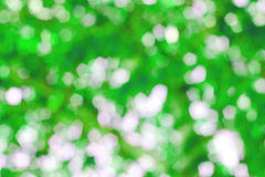 Blurred bokeh wallpaper background. With natural Stock Images
