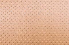 Leatherette Royalty Free Stock Image