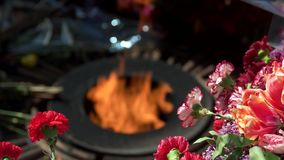 Blurred burning eternal flame and flowers bouquets. stock video