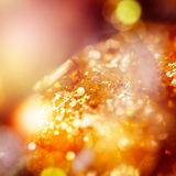 Blurred Christmas Lights and Sparkles Royalty Free Stock Photo