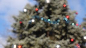 Blurred Christmas tree outdoor. Burred Christmas tree outdoor in the breeze stock footage