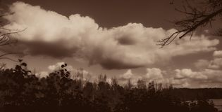 Blurred clouds and silhouettes of trees. Autumn season. stock images