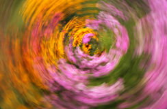 Blurred colourful meadow Royalty Free Stock Images