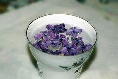 Blurred cup with lilac flowers on tablecloth, in retro romance colors Royalty Free Stock Photography