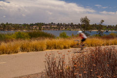 Blurred Cyclist Royalty Free Stock Images