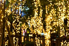 Blurred Decorative outdoor string lights hanging on tree in the garden at night time. Festivals season - decorative Christmas lights - happy new year royalty free stock photos