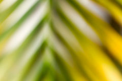 Blurred defocused natural background Stock Image