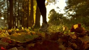 Blurred female running on fallen autumn leaves in sunny forest. Blazing sun. Super slow motion background bokeh shot stock video