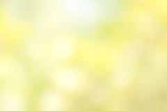 Blurred Flower bokeh Stock Photography
