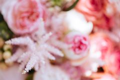 Blurred flowers colorful background royalty free stock photo