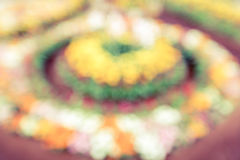Blurred of flowers Royalty Free Stock Photography