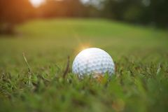 Golf ball on green in beautiful golf course with sunset. Golf ba. Blurred golf ball on green in the evening golf course with sunshine in thailand royalty free stock image