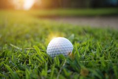 Blurred golf ball on green in the evening golf course with sunsh. Ine in thailand stock photos