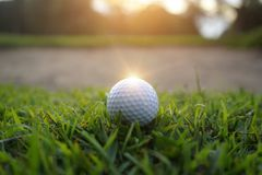 Golf ball on green in beautiful golf course with sunset. Golf ba. Blurred golf ball on green in the evening golf course with sunshine in thailand royalty free stock photo