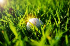 golf ball on rough in beautiful golf course at sunset background royalty free stock photos