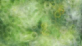Blurred Green Background Stock Photos