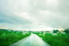 Blurred green summer landscape Stock Images