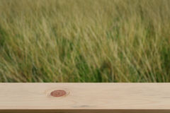 Blurred heather background with empty wooden Stock Image