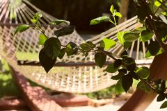 Blurred image of a hammock for recreation stock photo