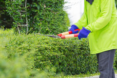 Blurred image of a man cutting green bush (motion blur image) Royalty Free Stock Images