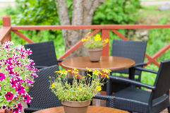 Blurred image of outdoor terrace cafe with flower pots Stock Photography