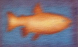 The image fish on a blue background. Blurred image of sea fish on blue background Royalty Free Stock Photo